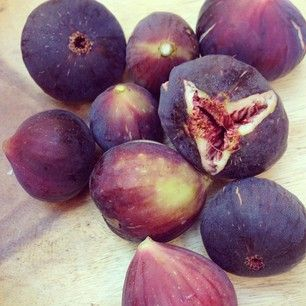 It's time to harvest figs!