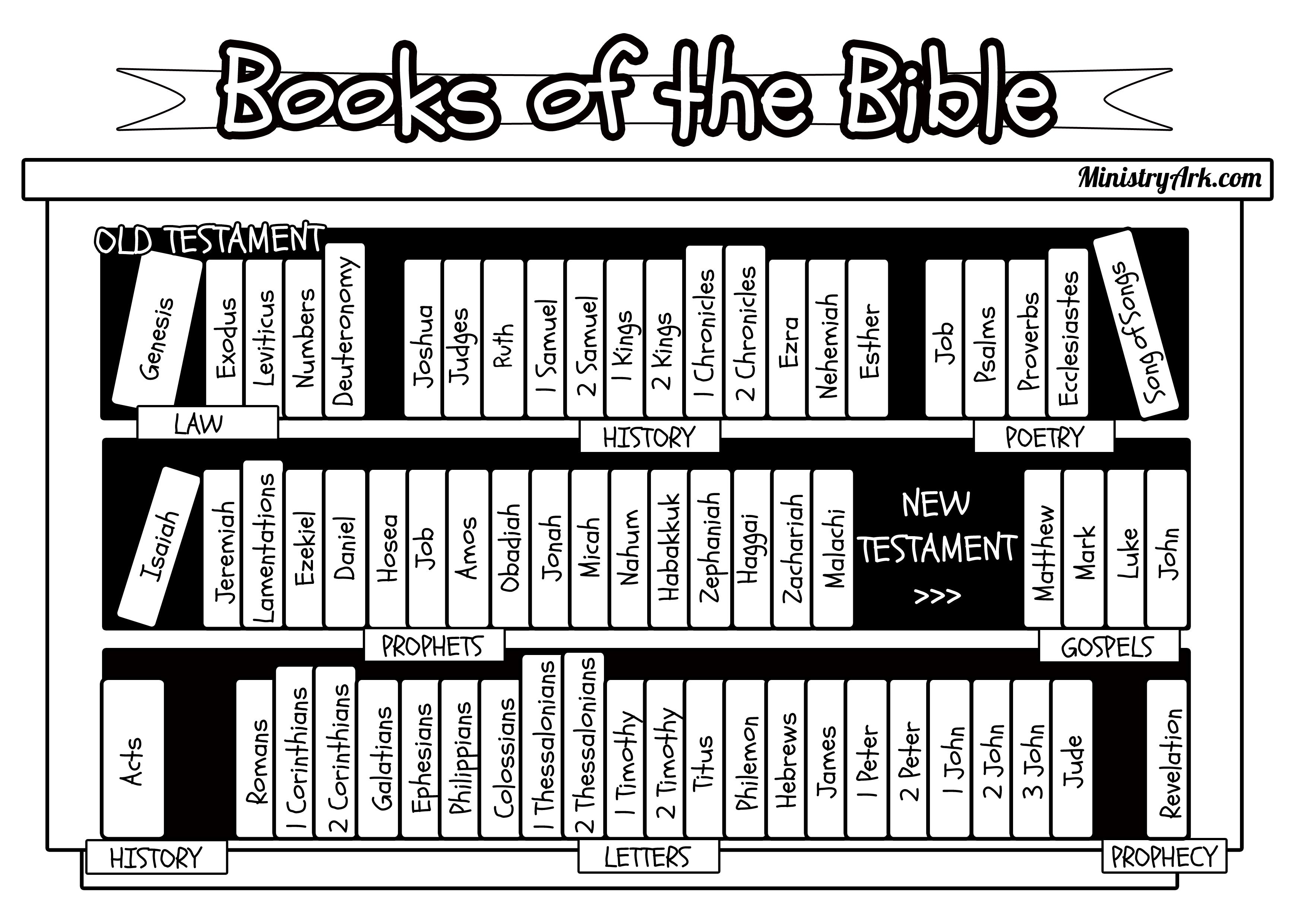 Books Of The Bible Bookcase Jpg 3508 2480 Bible Printables Books Of The Bible Bible Coloring