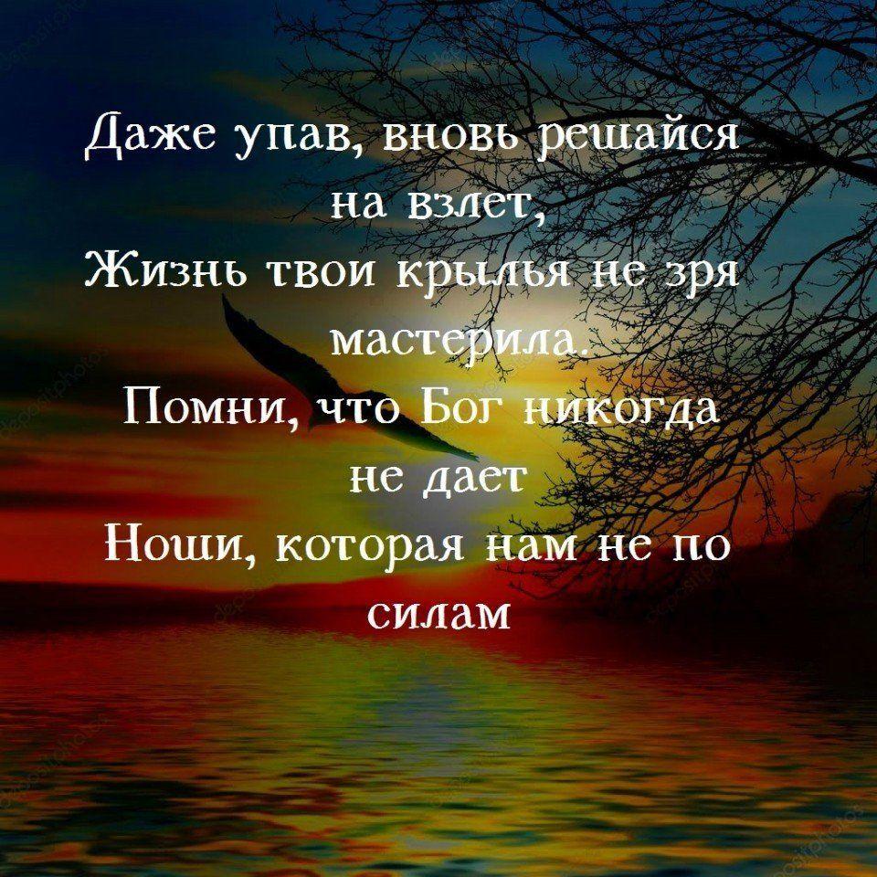 добрых снов фото