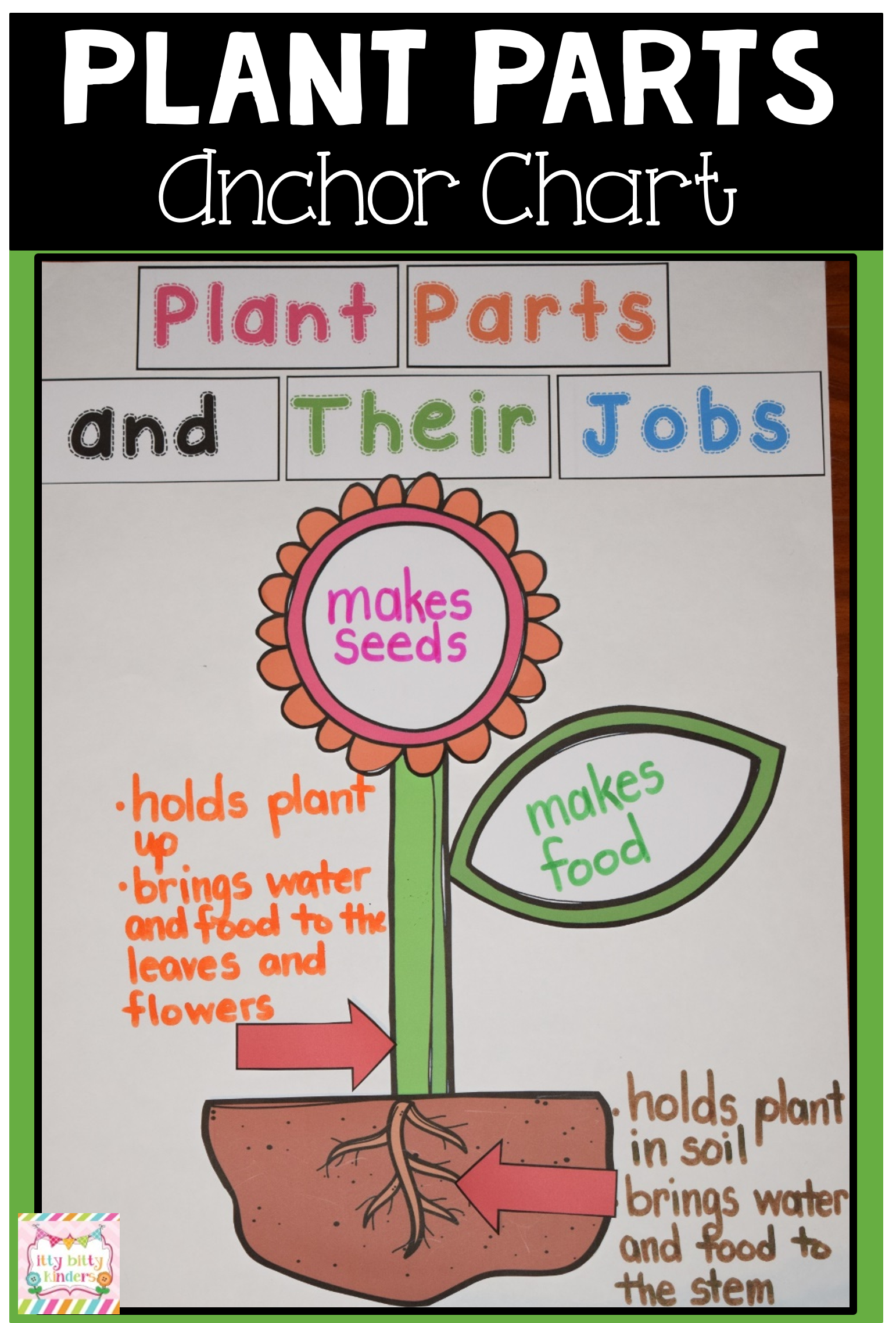 Plant Unit With Images