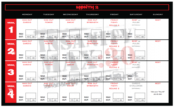 Insanity Max Workout Schedule  Month   Insanity