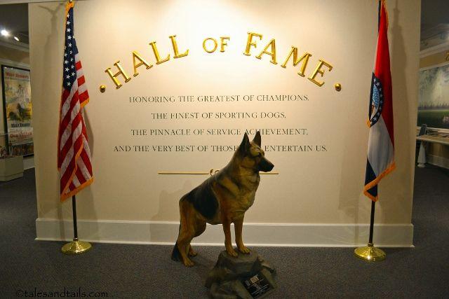 Akc Museum Of Dog St Louis Mo German Shepherd German