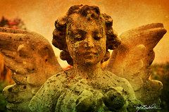 Cemetery Angel Prints - Bethany Baby Angel 3 Prints by Melissa Wyatt