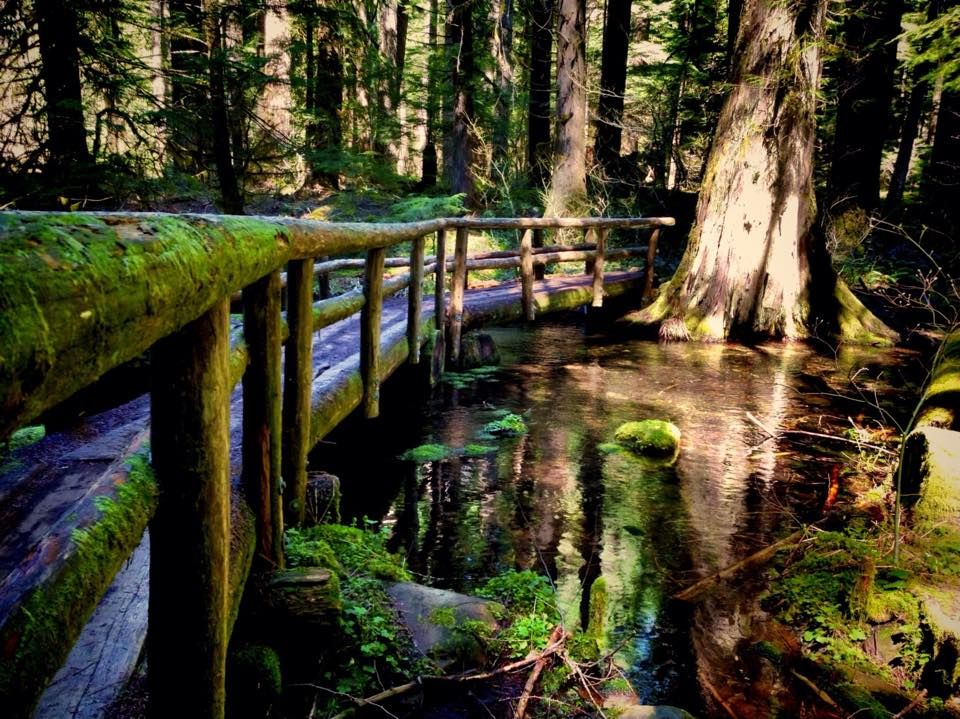 The Blue Pool Is One Amazing Place In Oregon You Need To See For