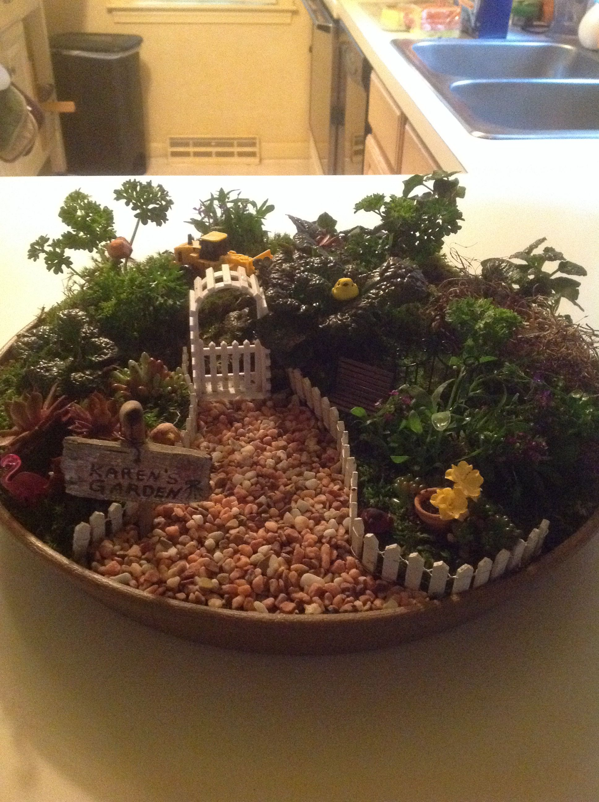 Indoor Fairy garden, a get well gift for a recuperating gardener ...