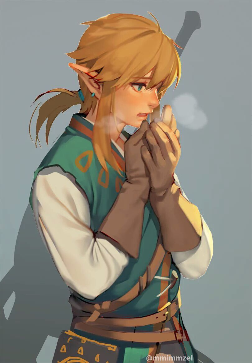 Botw Link Fanart Legend Of Zelda Breath Breath Of The