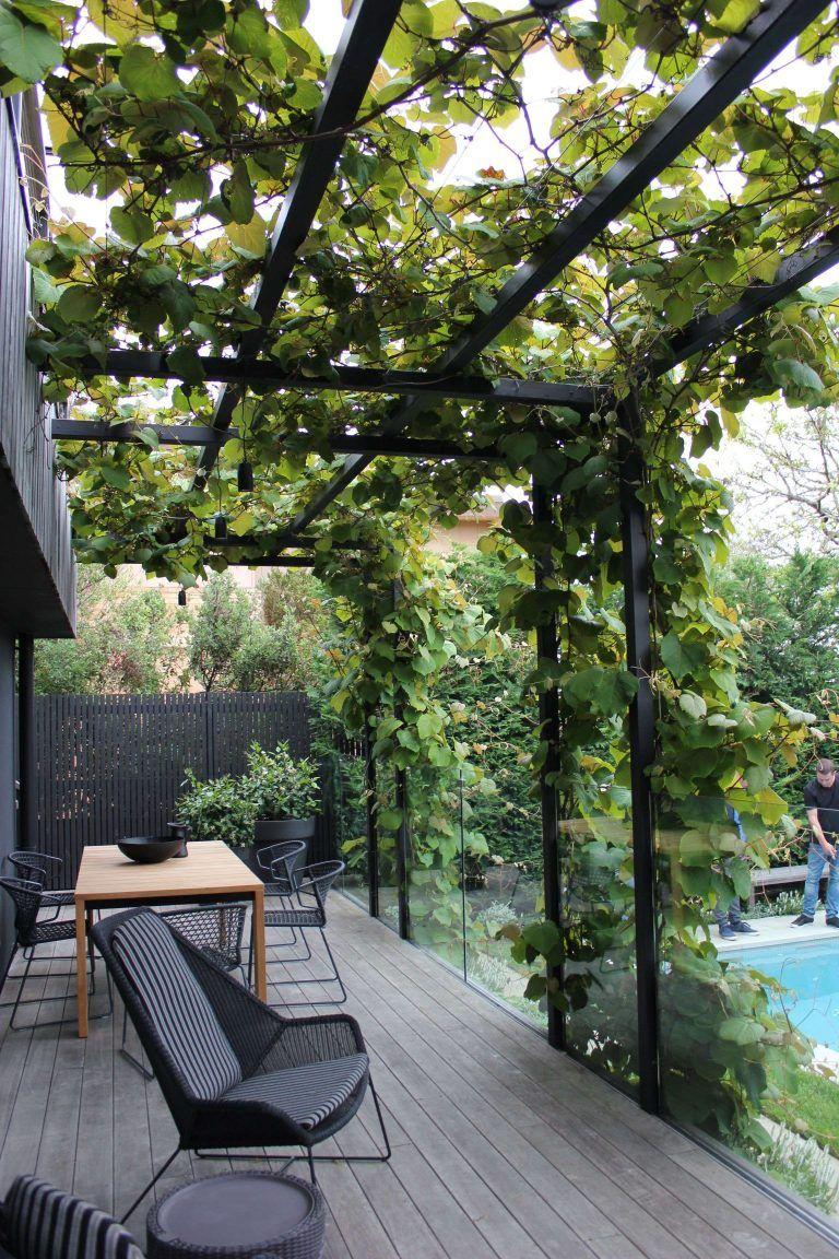 Plante Terrasse Couverte