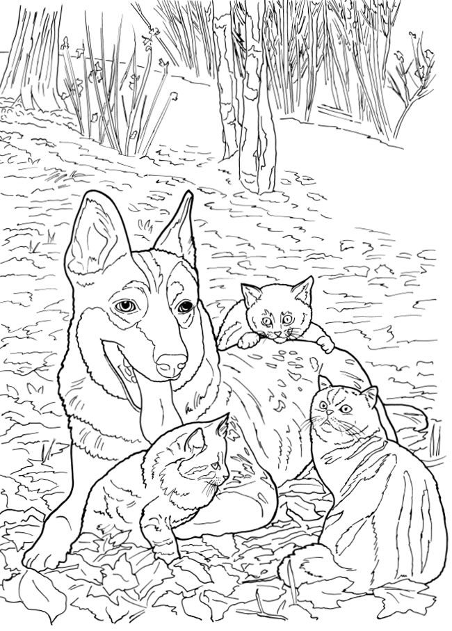 Coloring Page For Adults Digital Coloring Page Cats Dogs Etsy Cat Coloring Book Coloring Books Cute Coloring Pages