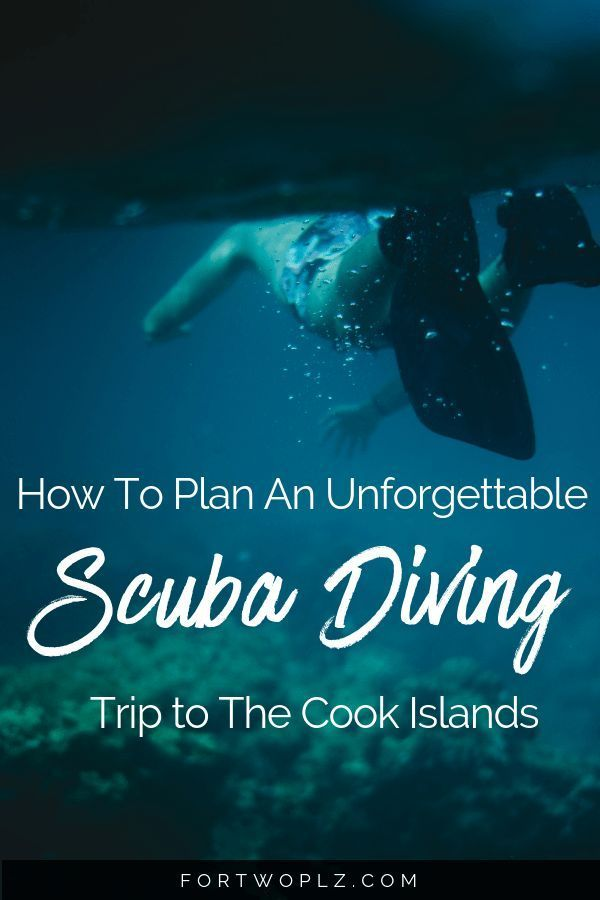 Let's Go Diving! The Best Way To Explore Rarotonga, Cook