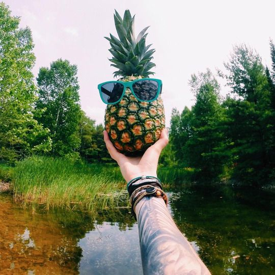 A pineapple a day // @seattlestravels @kameleonz