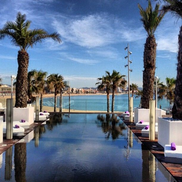 Barcelona W Hotel Pool Palms And Sun Lounger With Ocean View And Beach Pool Entrance At W