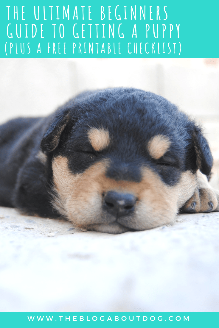 The Ultimate Beginners Guide To Getting A Puppy Plus A Free Printable Checklist The Blog About Dog So You Re Ready For A Getting A Puppy Puppies New Puppy