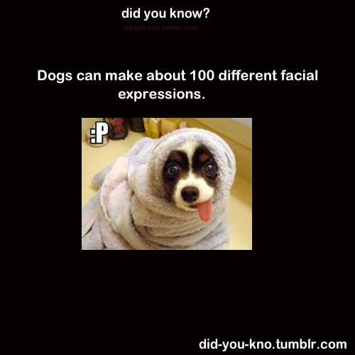 Awh, so cute!