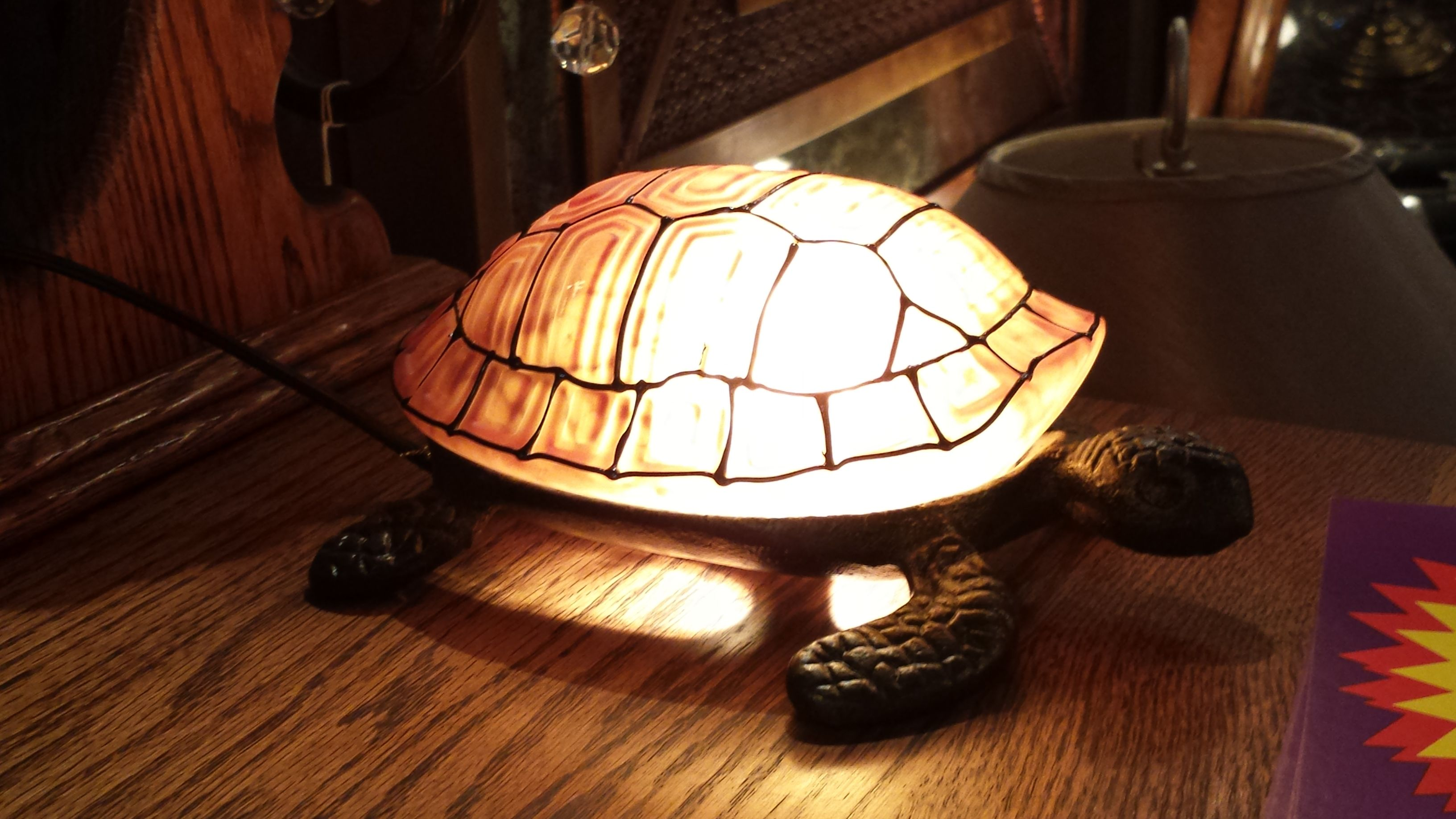 Turtle Lamp Lamp Unique Lighting Paper Lamp