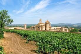 Resultado de imagen de mejores vinos de catalunya