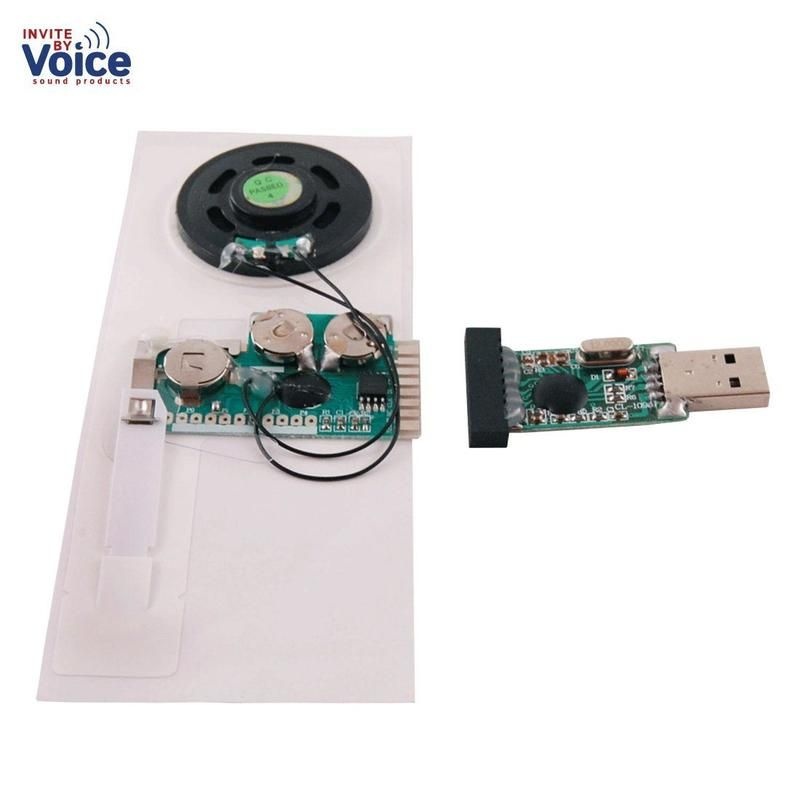 This Recordable Greeting Card Sound Module Is Ideal For DIY Personalized Musical Cards Audio Birthday Record Your Voice Message To