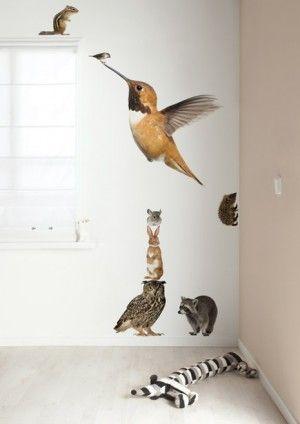 Muurstickers Forest Friends set Hummingbird XL