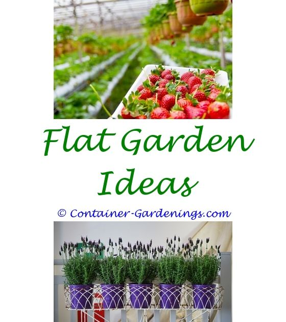 Containers For Container Gardening Vegetables Hanging Garden Basket Ideas