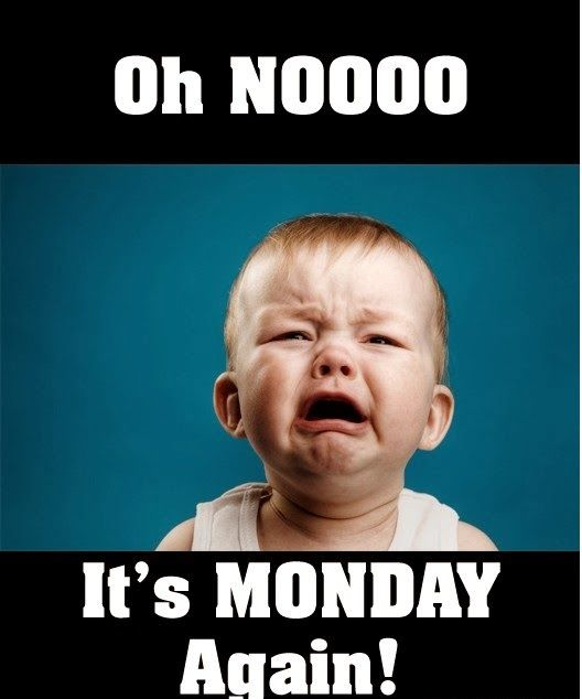 Funny Tomorrow Is Monday Meme : Oh no its monday again all quotes pinterest mondays