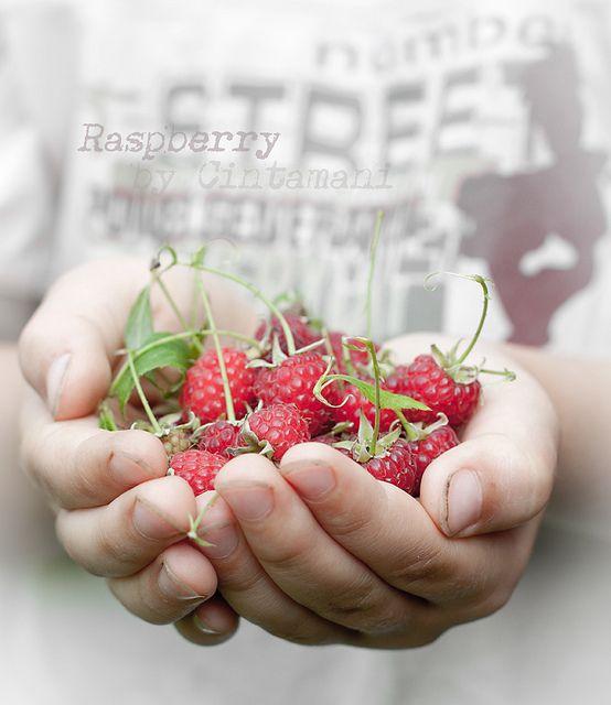 Raspberry and... by Cintamani