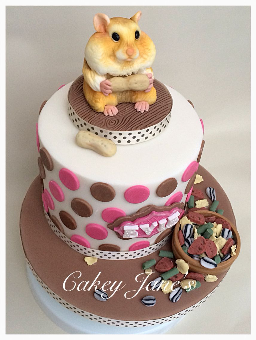 Hamster Themed Birthday Cake Hamster In 2018 Pinterest