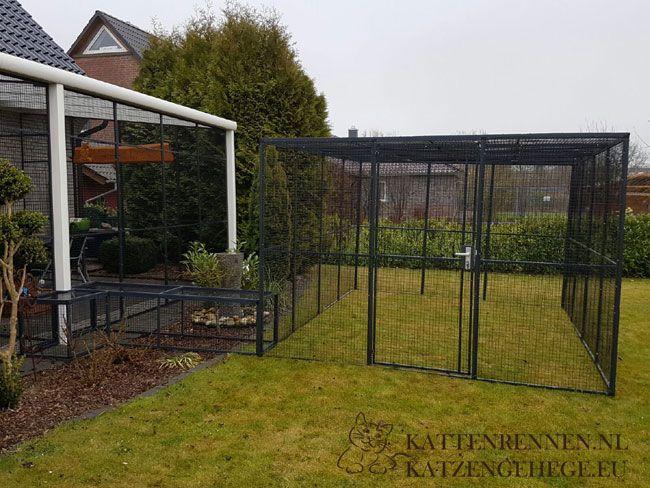 aluminium kattenren katzengehege zwinger katzenauslauf fur babies pinterest dieren en tuin. Black Bedroom Furniture Sets. Home Design Ideas