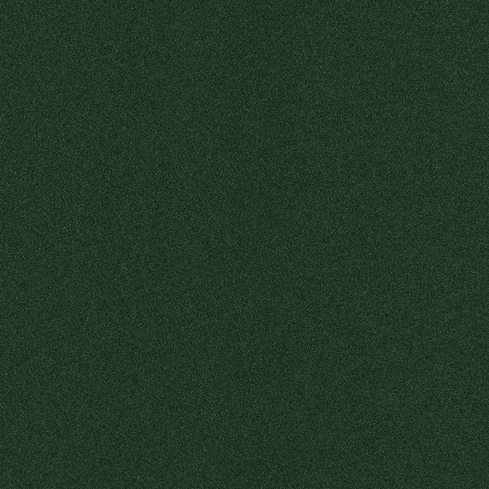 Arcadian Color Heather Green Texture IndoorOutdoor 12 ft Carpet