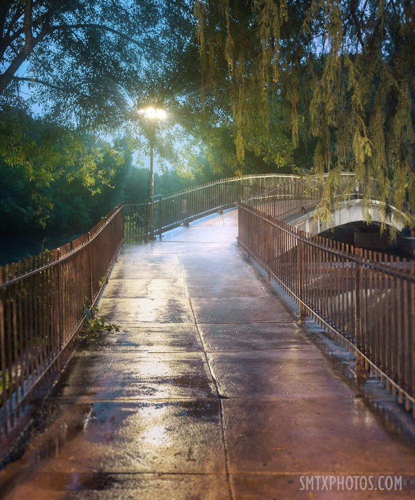 Summer Rain In Sewell Park Sewell Park San Marco Summer Rain