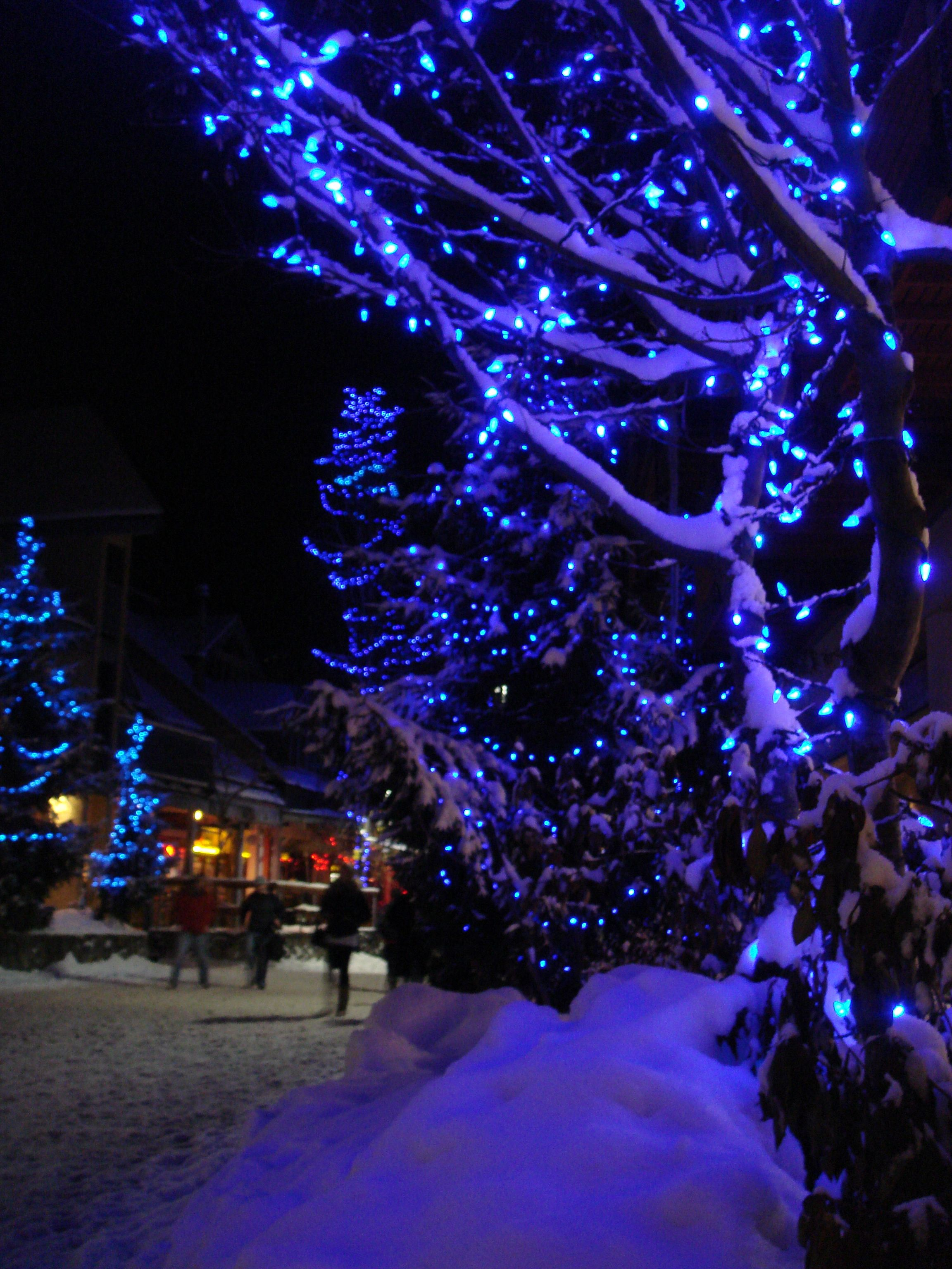 Blue Christmas Whistler Village Christmas Lights