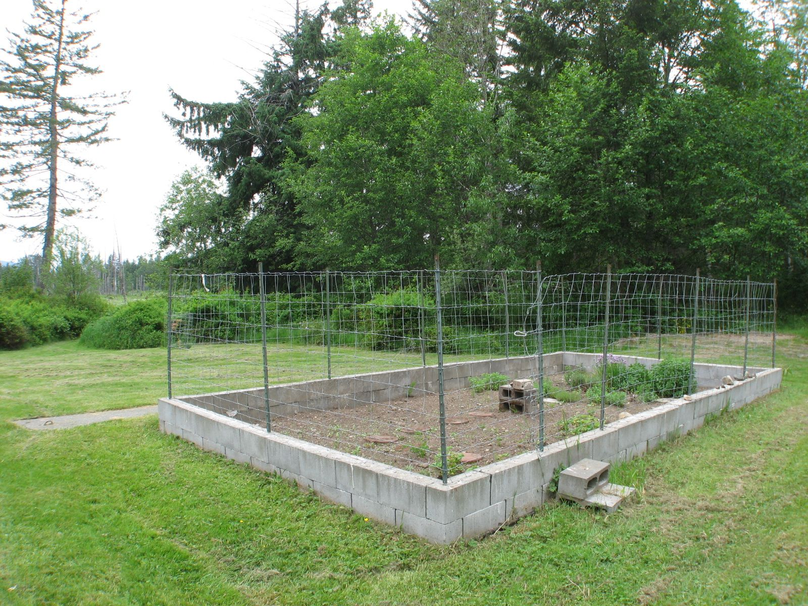 Deer proof vegetable garden ft deer proof fence surrounds the fertile soil in the - Deer proof vegetable garden ideas ...