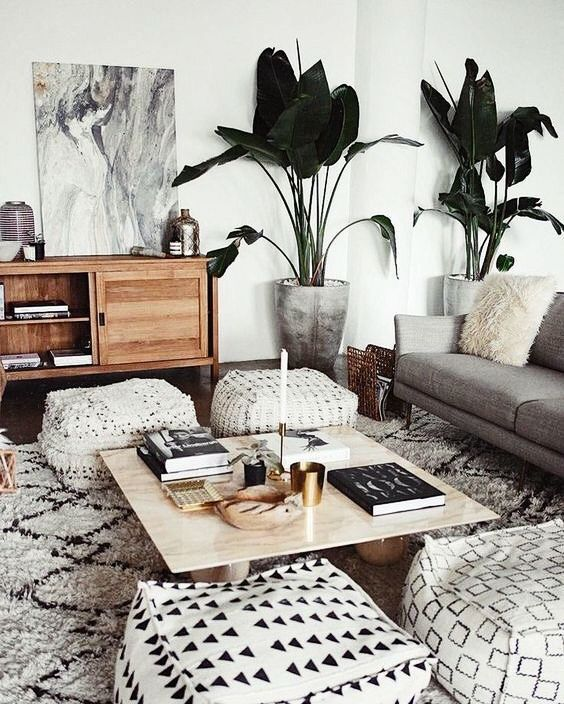 Gorgeous Living Room Light Grey Sofa Plants Black And White