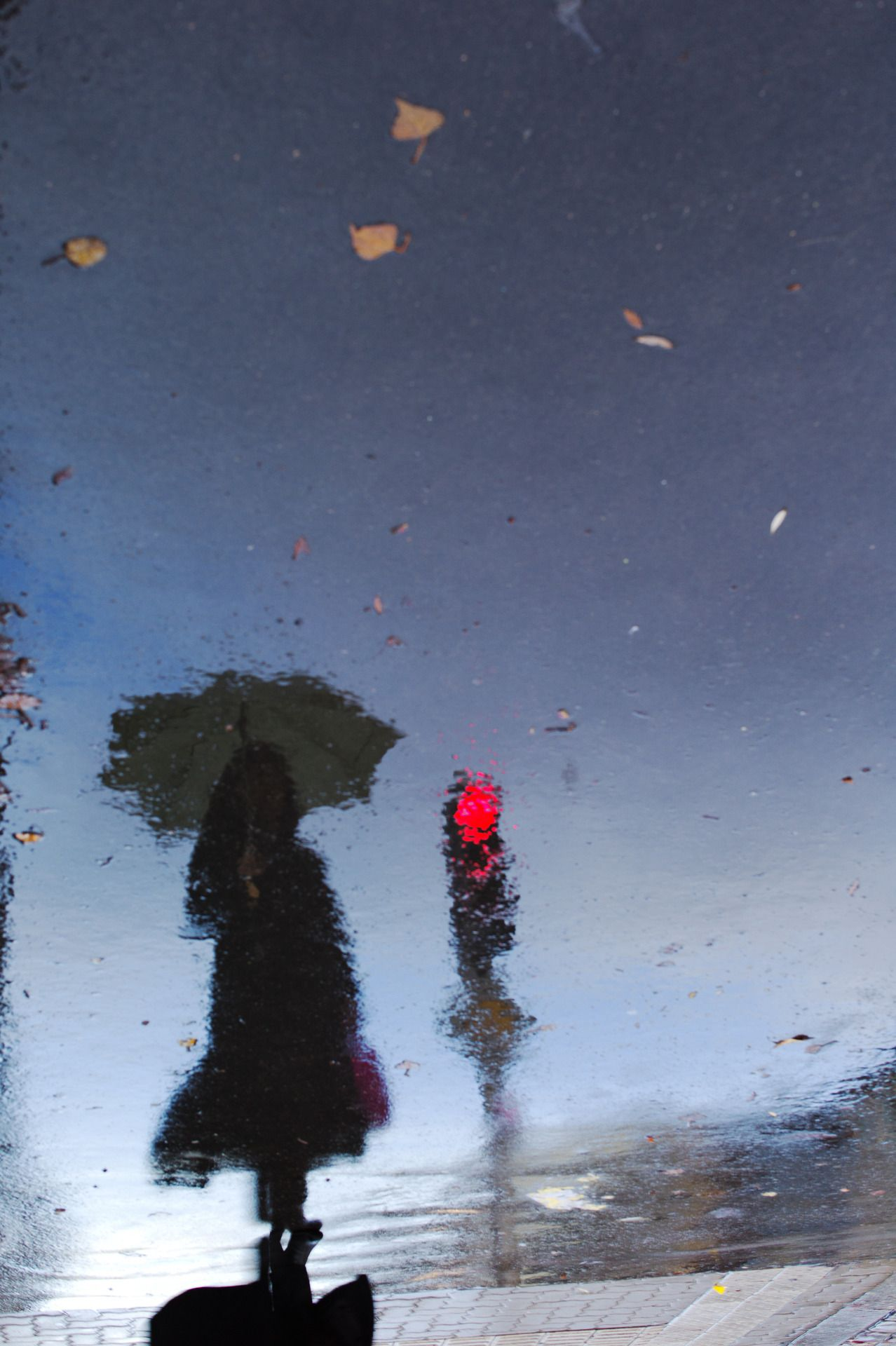 Pin by B e ll c a n t o on REFLECTIONs | Pinterest | Rain ... for Umbrella Photography Tumblr  584dqh