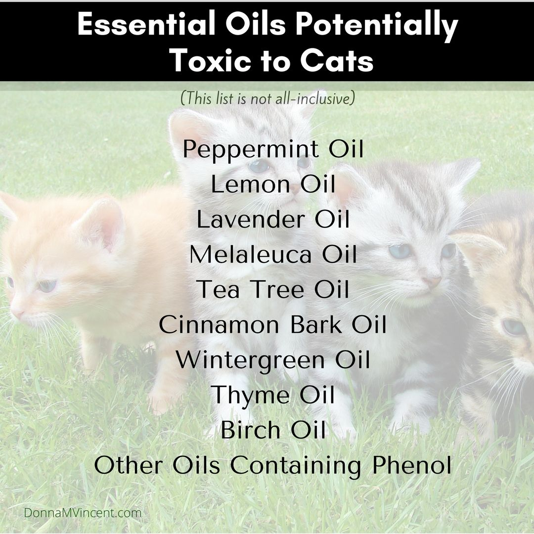 Cats can be very sensitive to essential oils. Some that