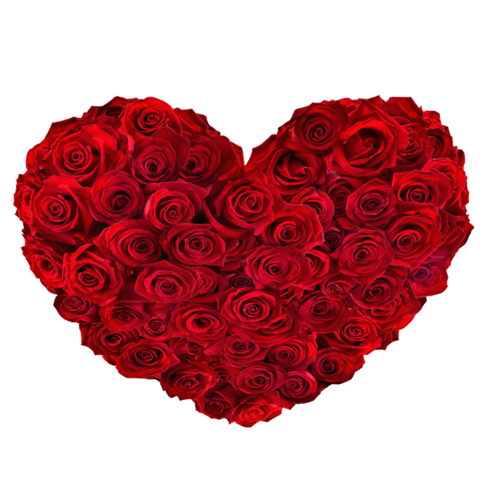 free download high quality red roses heart png image