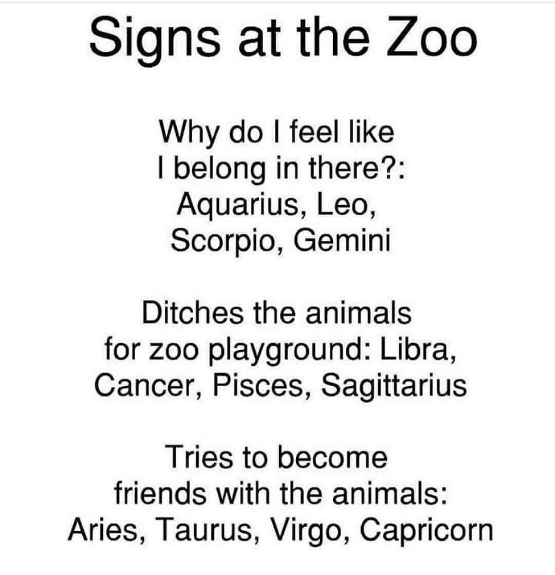 Horoscope Memes Quotes Zodiac Signs Gemini Zodiac Signs Funny Zodiac Signs Sagittarius