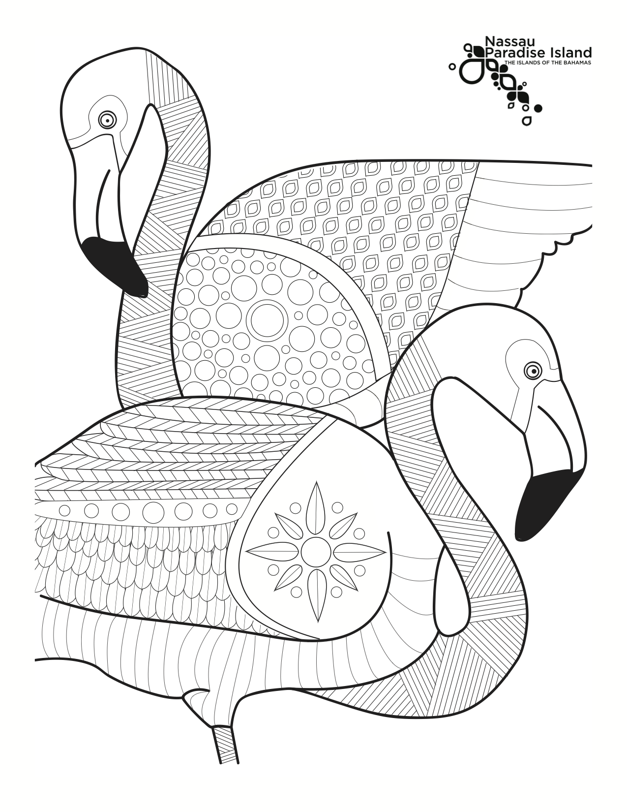 Coloring sheets for adults flamingo - The Beautiful Caribbean Flamingos Of Ardastra Gardens Zoo Concervation Centre Make The Perfect Inspiration Birds Of A Featheradult Coloring