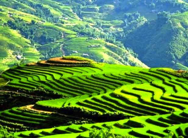 sapa - vietnam | future trips | Vietnam tourism, Vietnam travel, Vietnam
