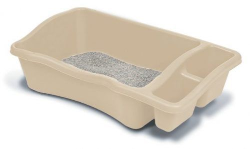 SOLUTION Why is My Cat Peeing Outside the Litter Box