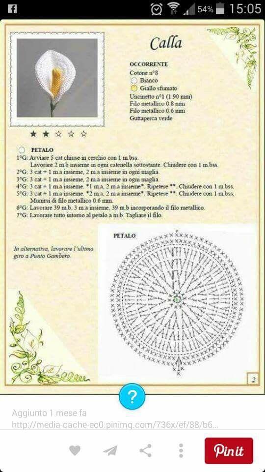 Pin de Janina Leniar en Szydelkowe kwiaty | Pinterest | Flores ...