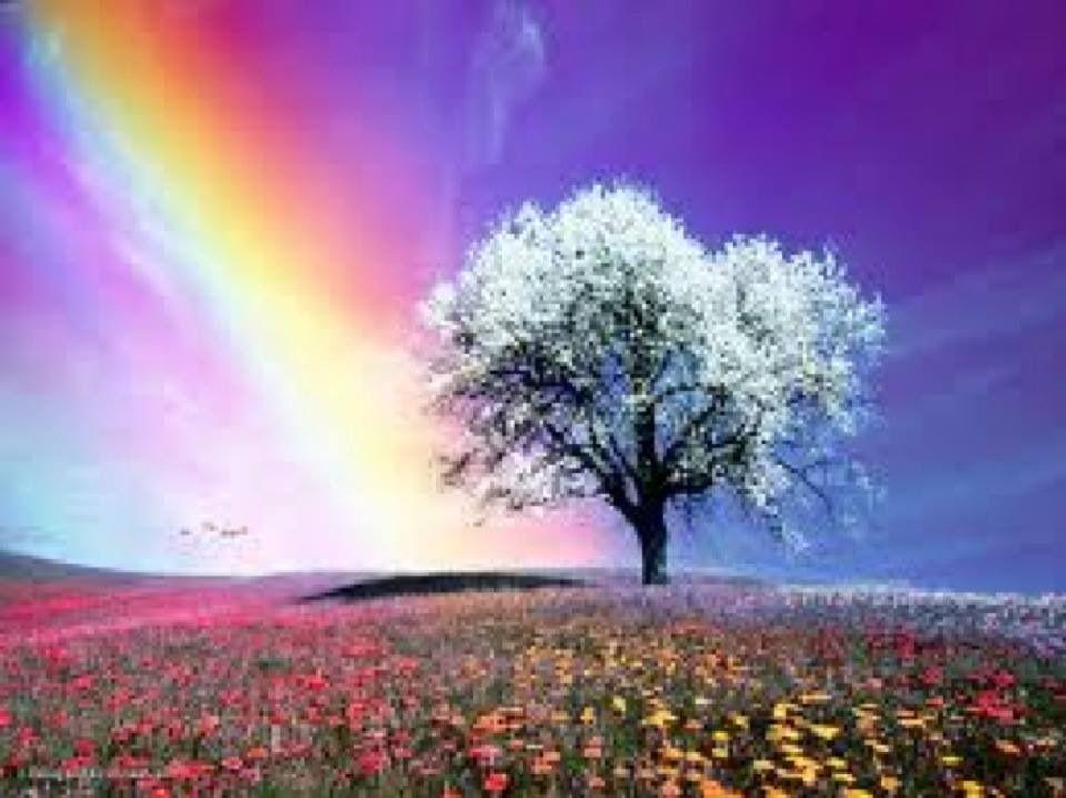 Rainbow sending hopes