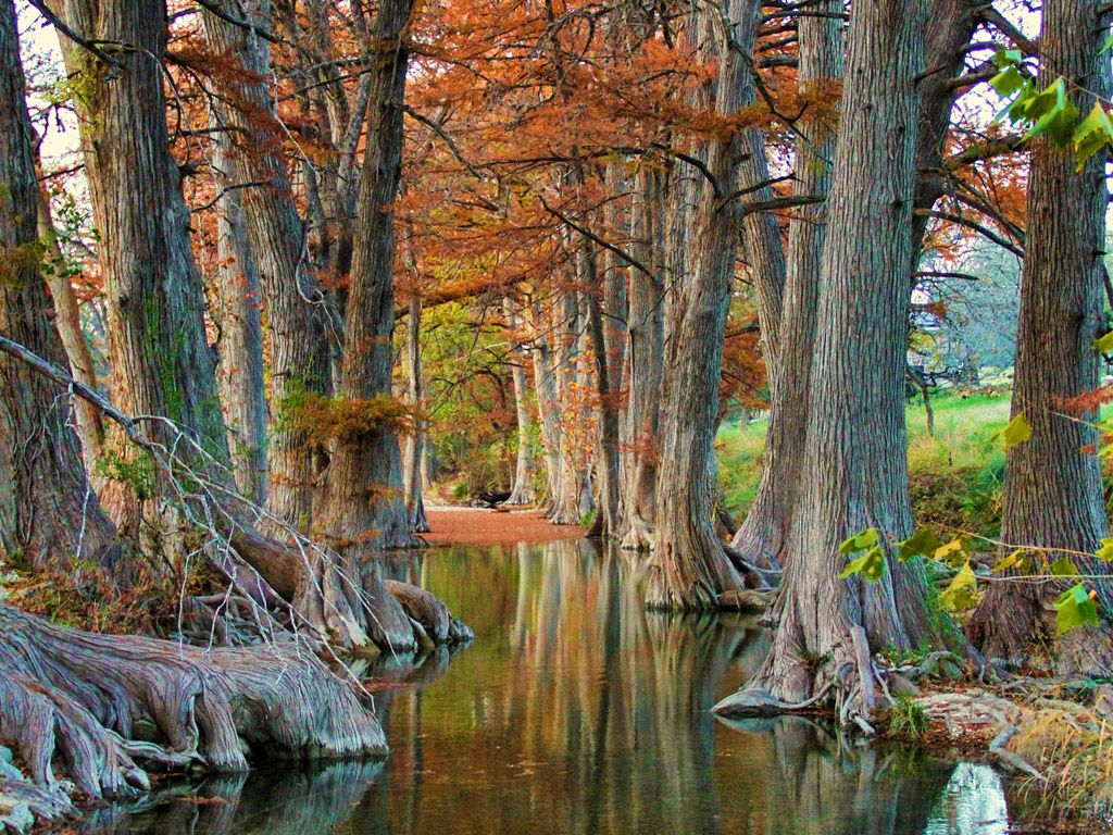 Sister creek amazing nature places to go roadside