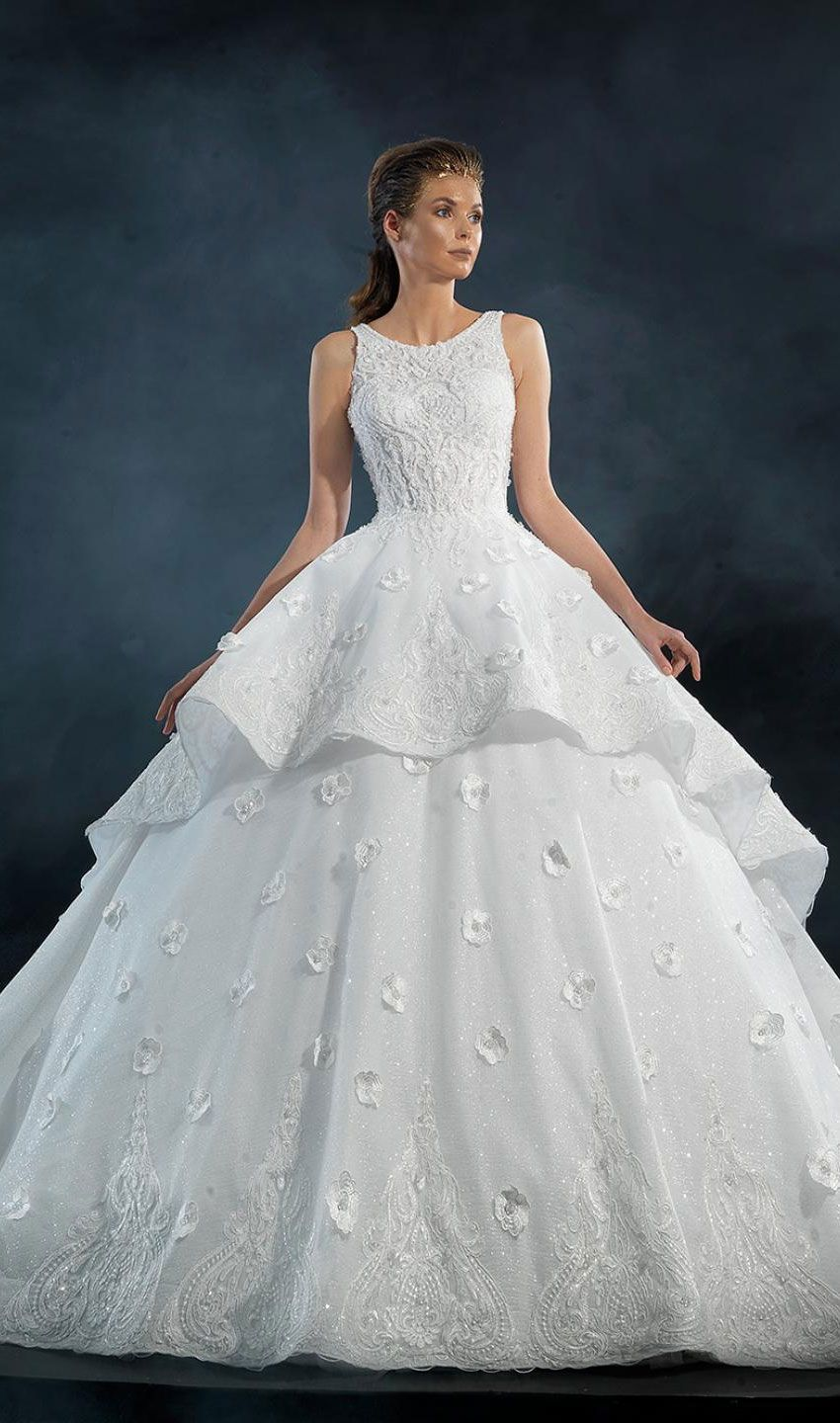Naja Saade Couture 2019 Wedding Dresses - Starlight 2019 Bridal Collection - wedding dress with loyal train #wedding #weddingdress #weddinggown