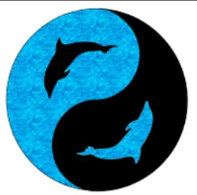 dolphin yin yang love this the colors google images my style rh pinterest com Hedgehog Yin Yang Yin Yang Fire and Ice