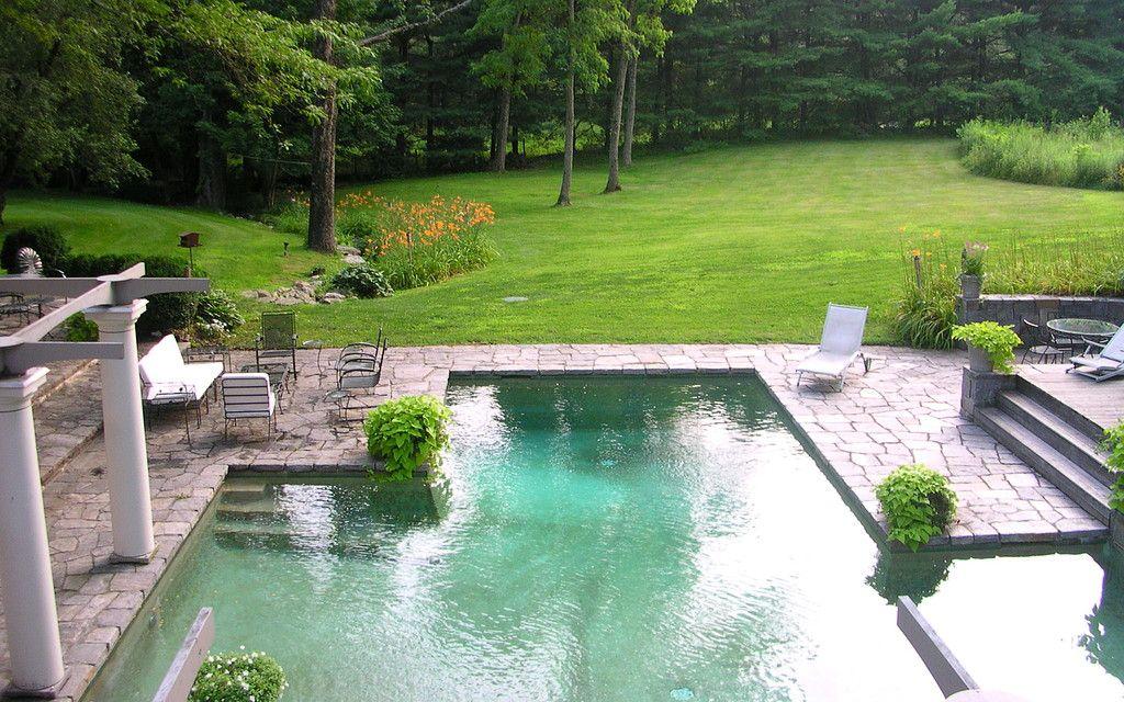 Hinterhofideen, Gartenideen, Schwimmbecken, Pool Anlagen, Pool Fertiger,  Pool Gartenbau, Gartenarchitektur, Schwimmbäder, Traum Pools