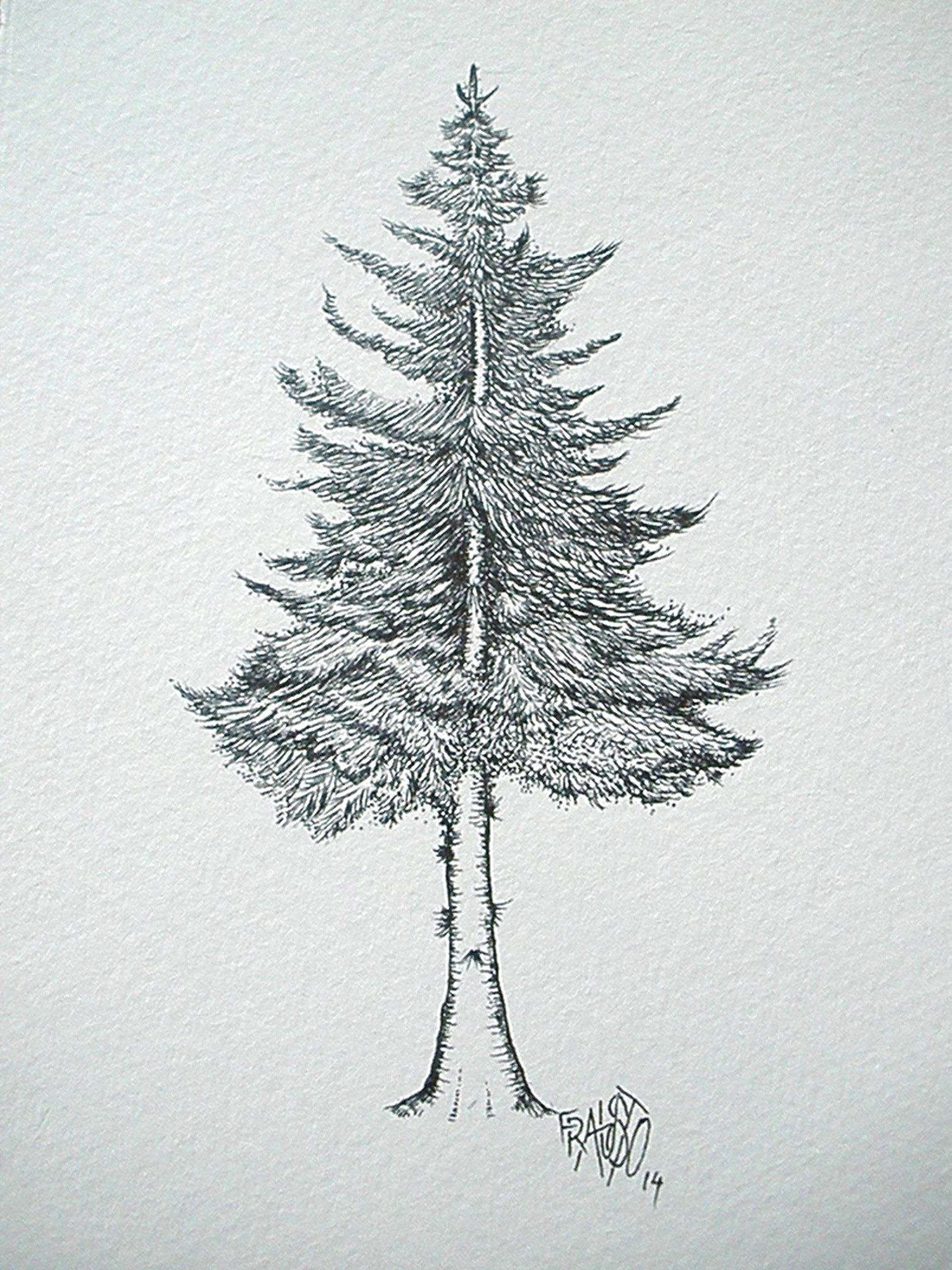 How To Draw Pine Trees Szukaj W Google Tattoo Christmas Tree