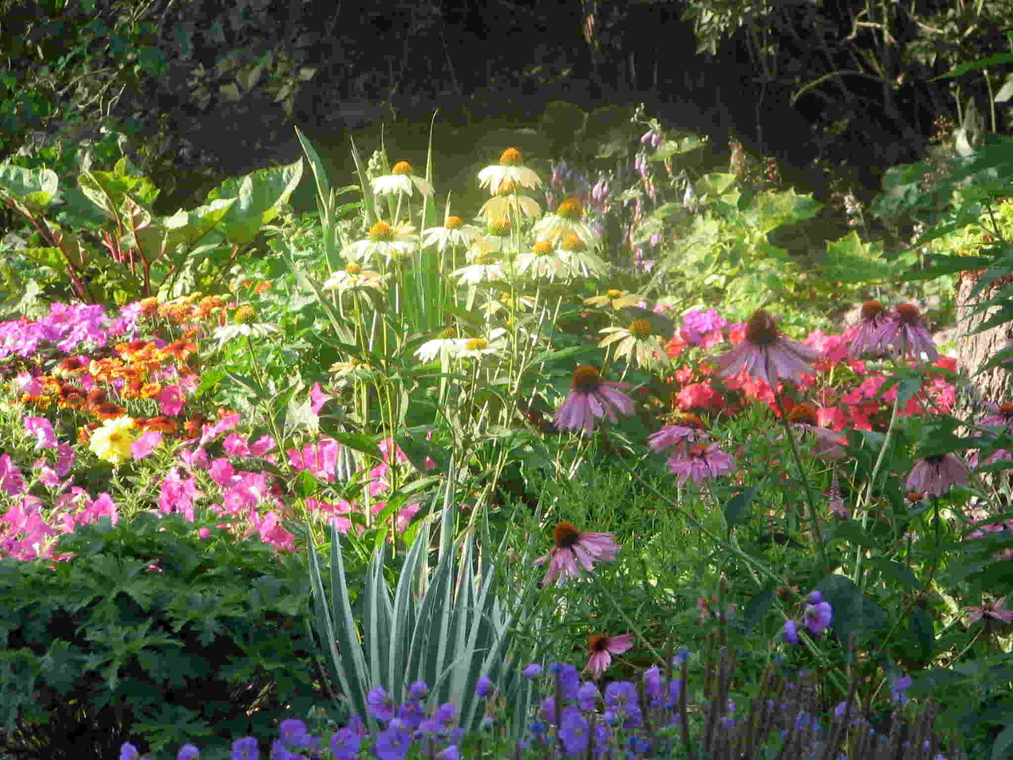 perennial garden design plans 11 october 2010 sound colour vibration music