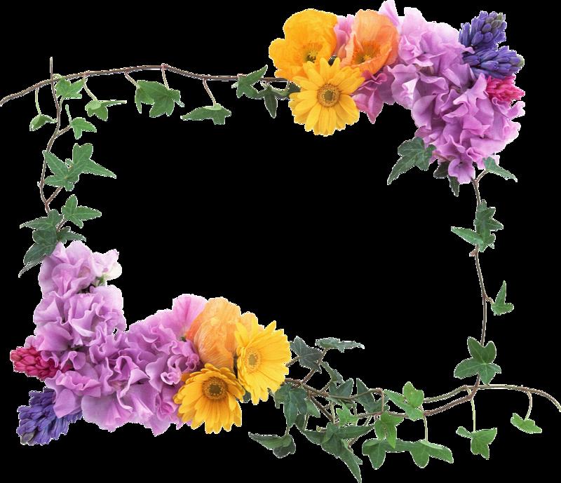 Pin By Cheryl Ann On Fotoramochki Free Photo Frames Flower Frame Flower Photos