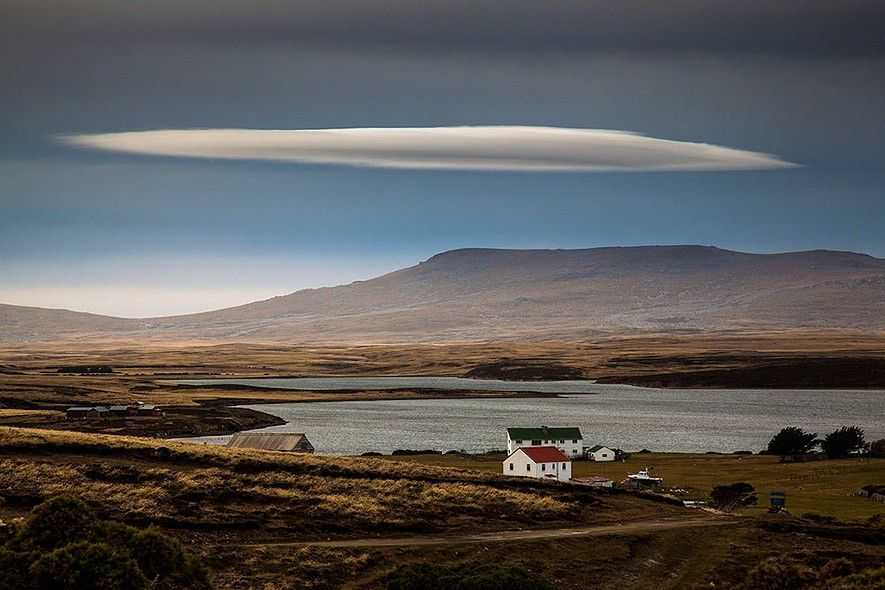 Wild Stories, Commended: Tim Taylor, UK Der Brite Tim Taylor fotografierte diese Momentaufnahme auf den Falkland-Inseln