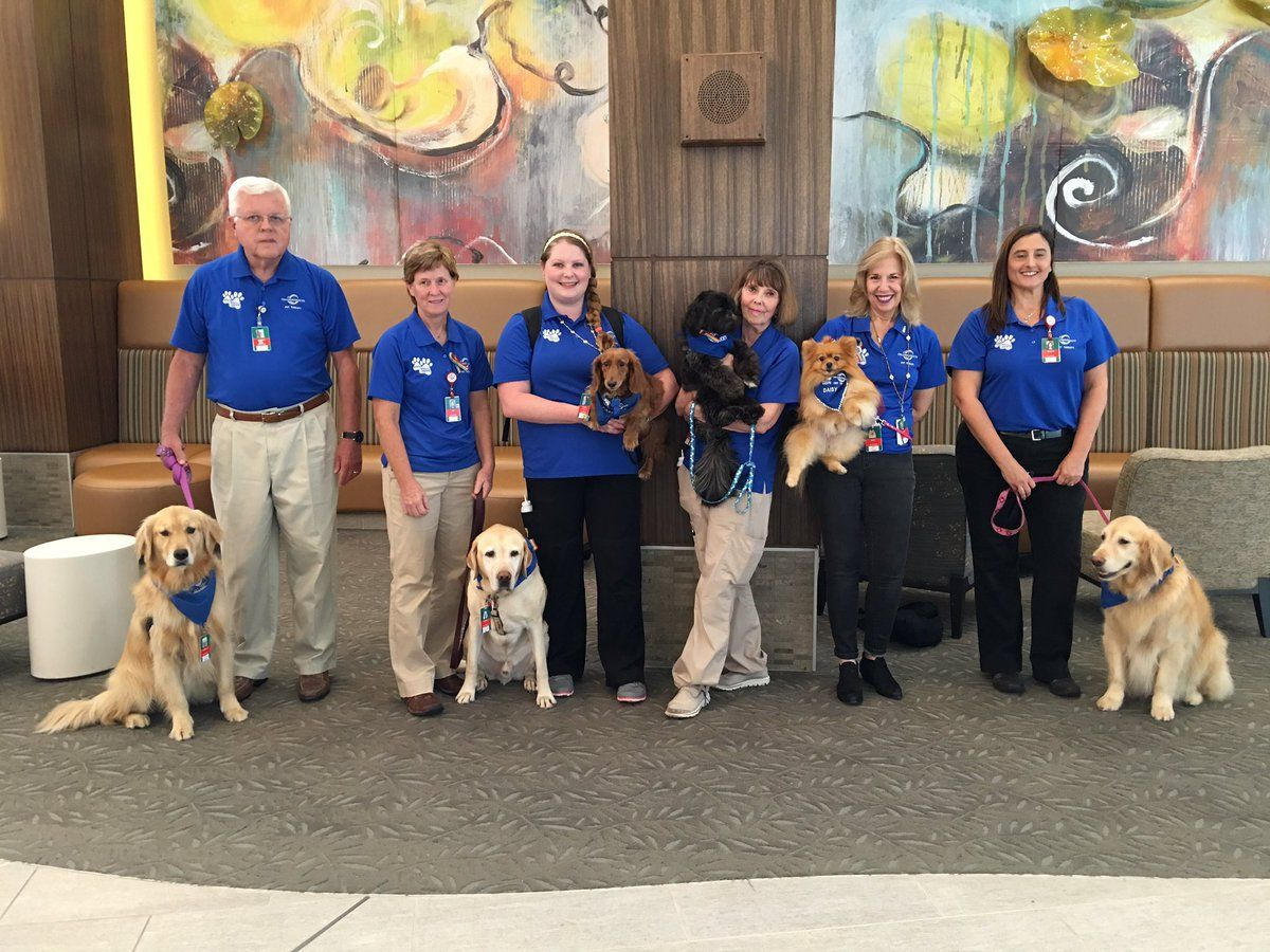 Happy National Dog Day From Orlando Health S Petsmart Pet Therapy Teams Happy National Dog Day Profitable Fundraisers Orlando Health