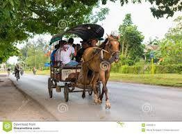 .transporte a caballos cuba